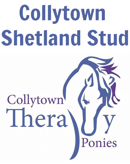 Collytown Stud