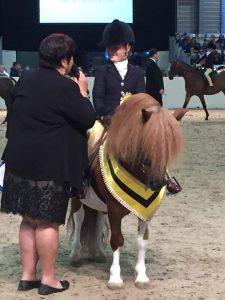 Shetland Wins Equifest
